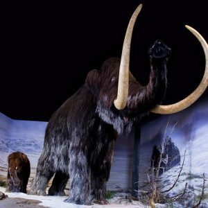 les géants du parc de la préhistoire